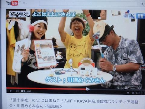 にゃ〜〜!!猫又DSCF7040 のコピー