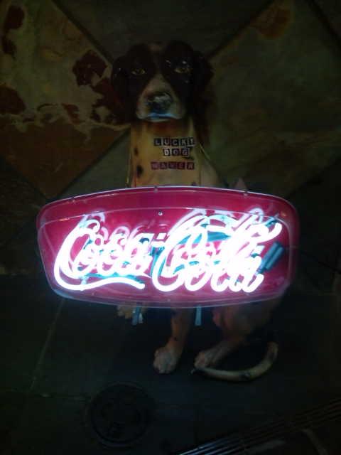 ウェーバー犬F1000301 のコピー