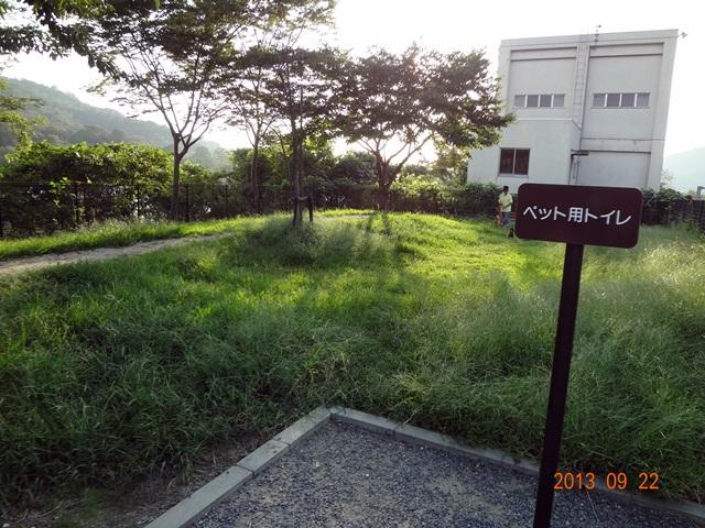 wanan105 (2)