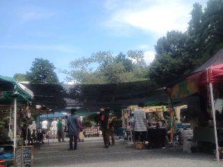 2013年7月21日 オーガニックマーケット2