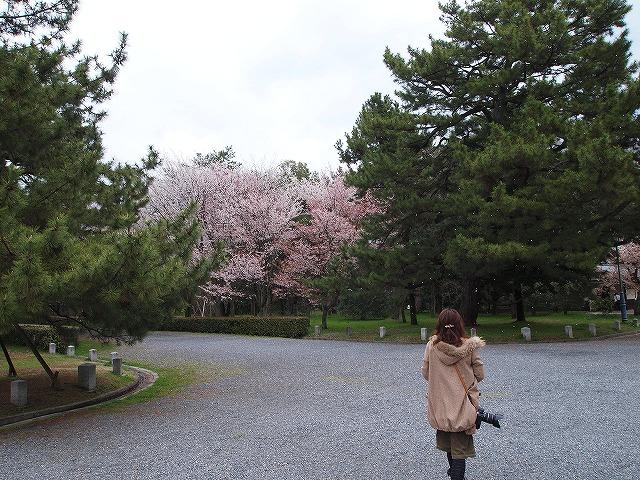 068京都御苑