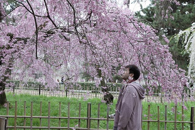 IMG_5245京都御苑