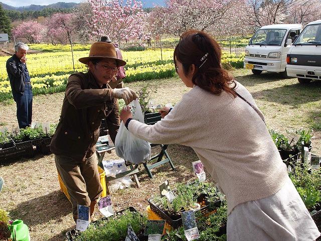 120眞原桜並木