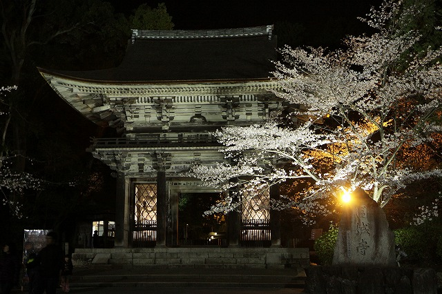 IMG_5527三井寺