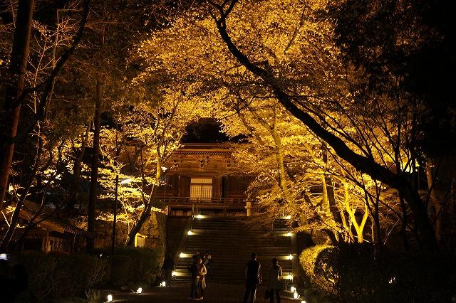 IMG_5537三井寺