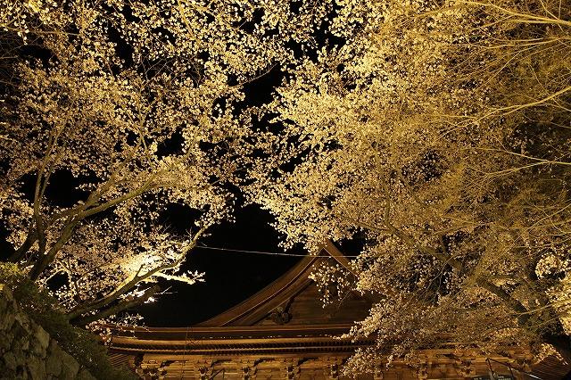 IMG_5542三井寺