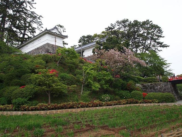 014小田原城