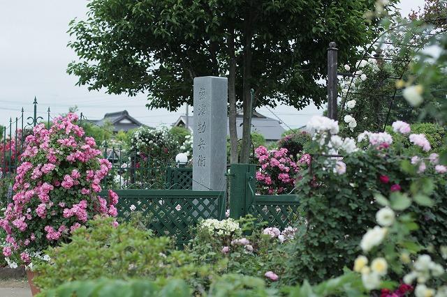 IMG_2944藤沢邸