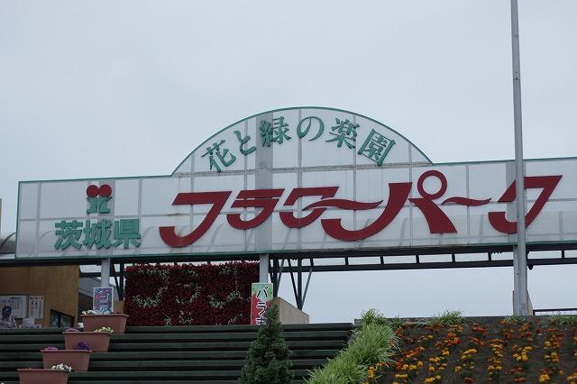 IMG_3298茨城県フラワーパーク