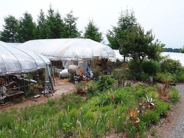 P6070837錦玉園