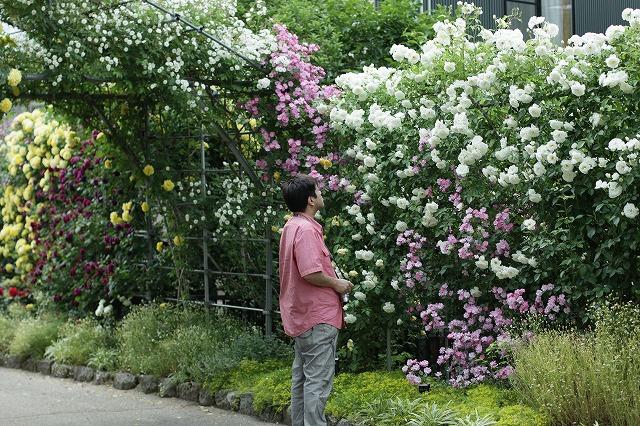 IMG_4239中野一本木公園