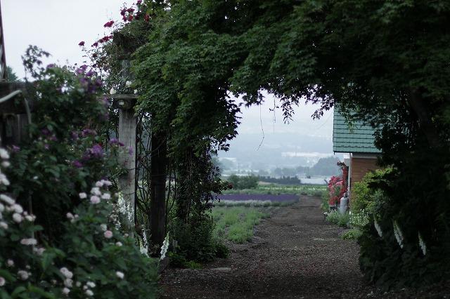 IMG_4679夢ハーベスト農場