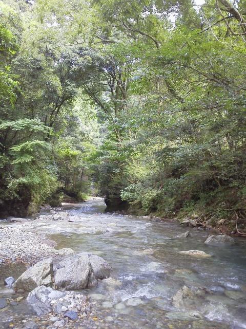 大平渓谷 遠景
