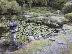 永国寺 池