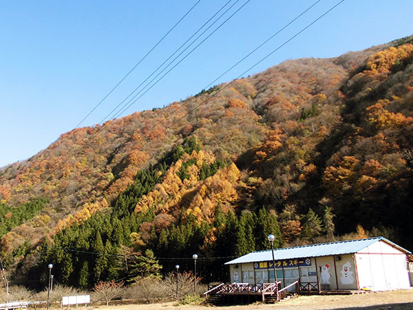 kouyou02.jpg