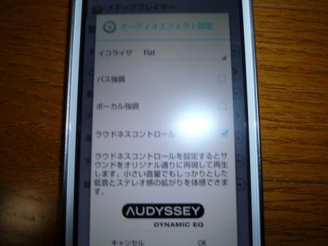 P1000681.jpg