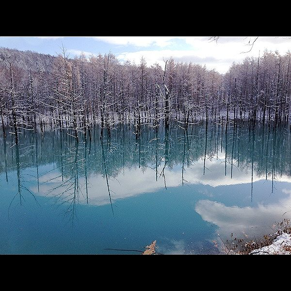 s-青い池11月9日秋津様、ご提供