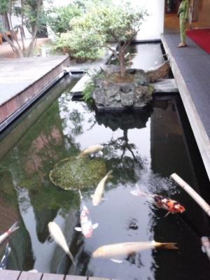 hot springs2 resized