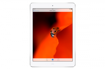 apple_2013_ipad_air_006.png