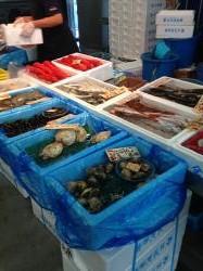 長井水産 魚