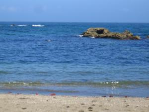 秘密の海岸1