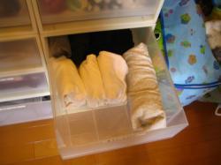 娘の衣類整理 長袖T