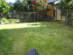 芝刈り後2