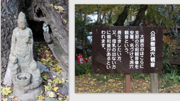 2014-11-134_convert_20141215013504.jpg