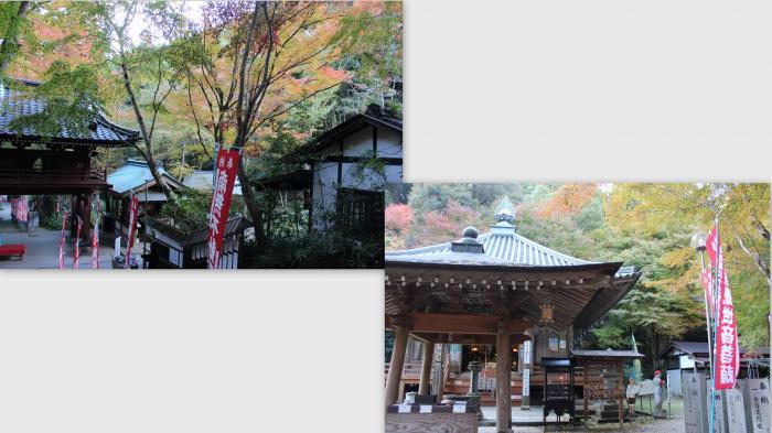 2014-11-140_convert_20141215013524.jpg