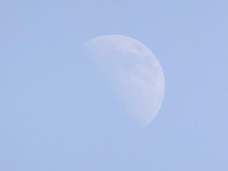 お月様815