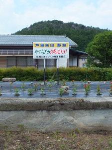 2013-06-08 芦場新田駅2