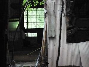 三春2013-07-13 001 2013-07-13 025