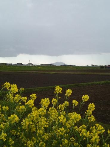 2013.4.7「写真で散歩」春、荒れた天気で望む筑波山