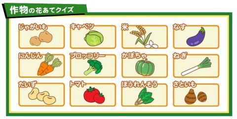 案外難しい子ども向け「作物の花あてクイズ」by農林水産省