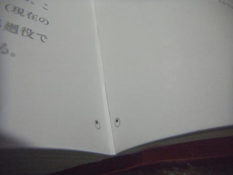 ほぼ全ページに目玉がついている展覧会の図録