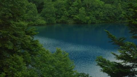志賀高原に行っていた訳は…