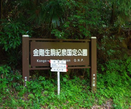 130721- 岩湧山ハイキング2