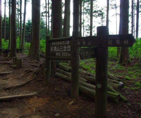 130721-岩湧山ハイキング3