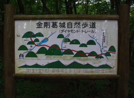 130721-岩湧山ハイキング5