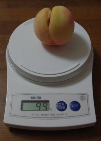 130818-桃紅5