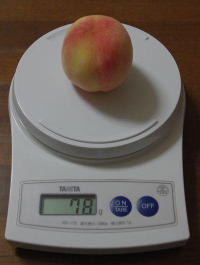 130826-なつおとめ