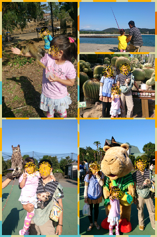 Collage 2013-10-14 10_14_37