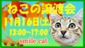 201311_banner.jpg