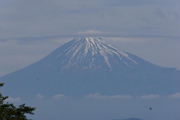 富士山(松竹)