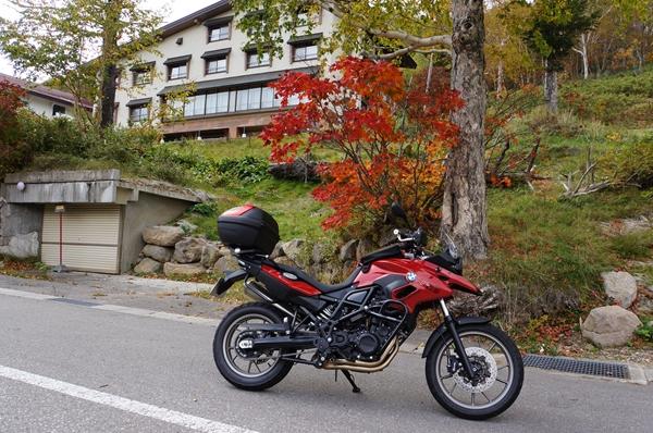 GSと赤い葉っぱの木