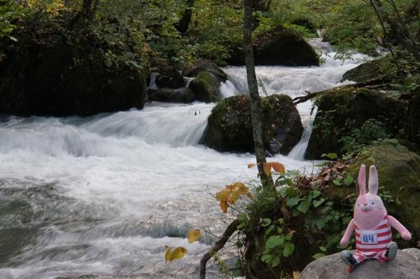 阿修羅の流れ2