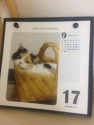 まめカレンダー9月17日
