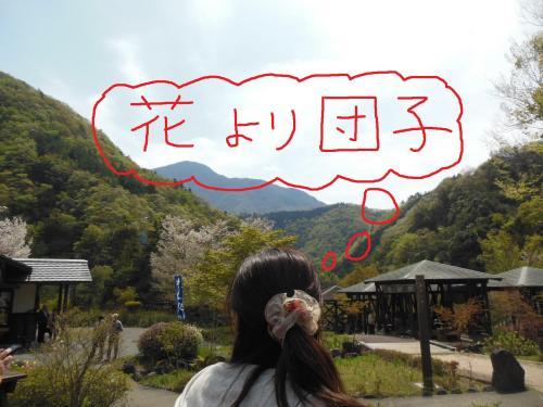 5富士五湖1