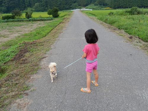 8・10・6散歩2