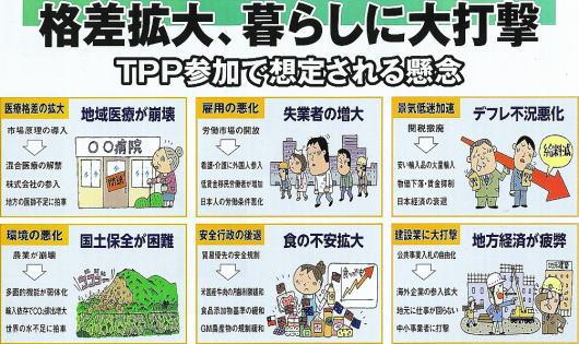TPPの悪影響
